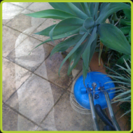 Paver Cleaner Gold Coast